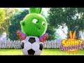 Cartoons for Children | SUNNY BUNNIES SPORTS DAY | Funny Cartoons For Children