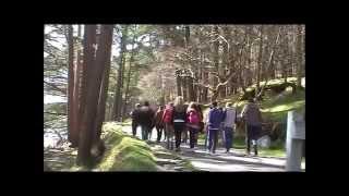 Voyage en Irlande CNDI Tourcoing 2015