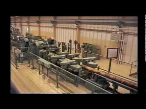 Big swedish export sawmill