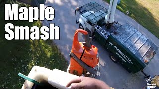 Smashing a Big Maple with the Bucket Truck - Start to Finish