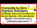 Consultar Ingreso Solidario, Banco Agrario, Daviplata, Bancolombia Y Bancow, Fácil Y Rápido