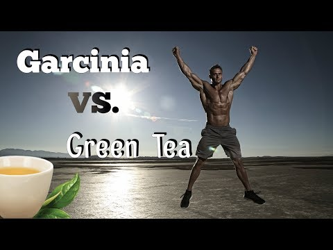 Garcinia Cambogia vs Green Tea for Fat Loss: Thomas DeLauer