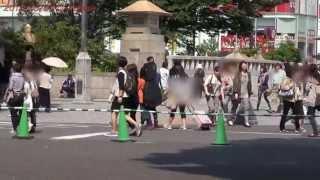 Japan Trip 2013 Tokyo Meiji-shrine Torii(gate) Jingū-bashi (bridge) Harajuku Station In Shibuya 654