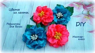 🌺 Цветы из лент 🌺 Резиночки для волос 🌺 Канзаши 🌺 DIY 🌺 Hand мade 🌺  Kanzashi 🌺