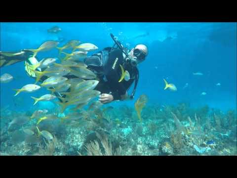 Dive in CUBA (Cayo Levisa) - GoPro Hero 4 Black - February 2015