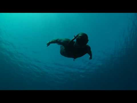 Freediving Cocos: A Day In Paradise