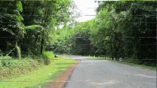 Driving through jungles [KUKKE-GUNDYA-DHARMASTHALA] in Maruti Suzuki Alto