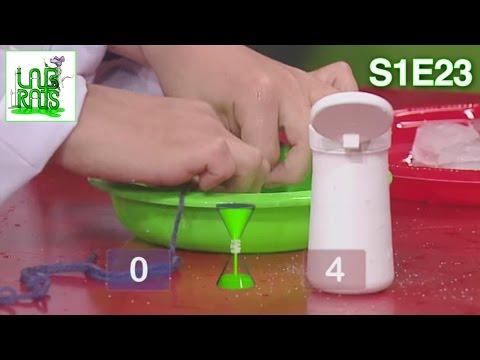 Labrats Challenge | S1E23
