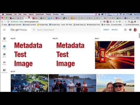 Online metadata viewer survey - CARL SEIBERT SOLUTIONS