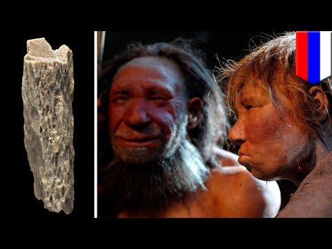Ancient Neanderthal-Denisovan hybrid found in Siberian cave - TomoNews Mp3