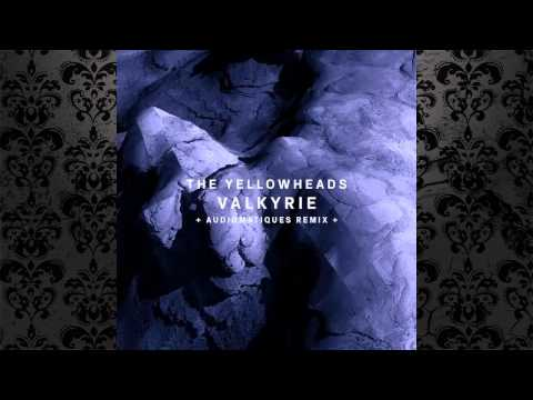 The YellowHeads - Valkyrie (Original Mix) [!ORGANISM]