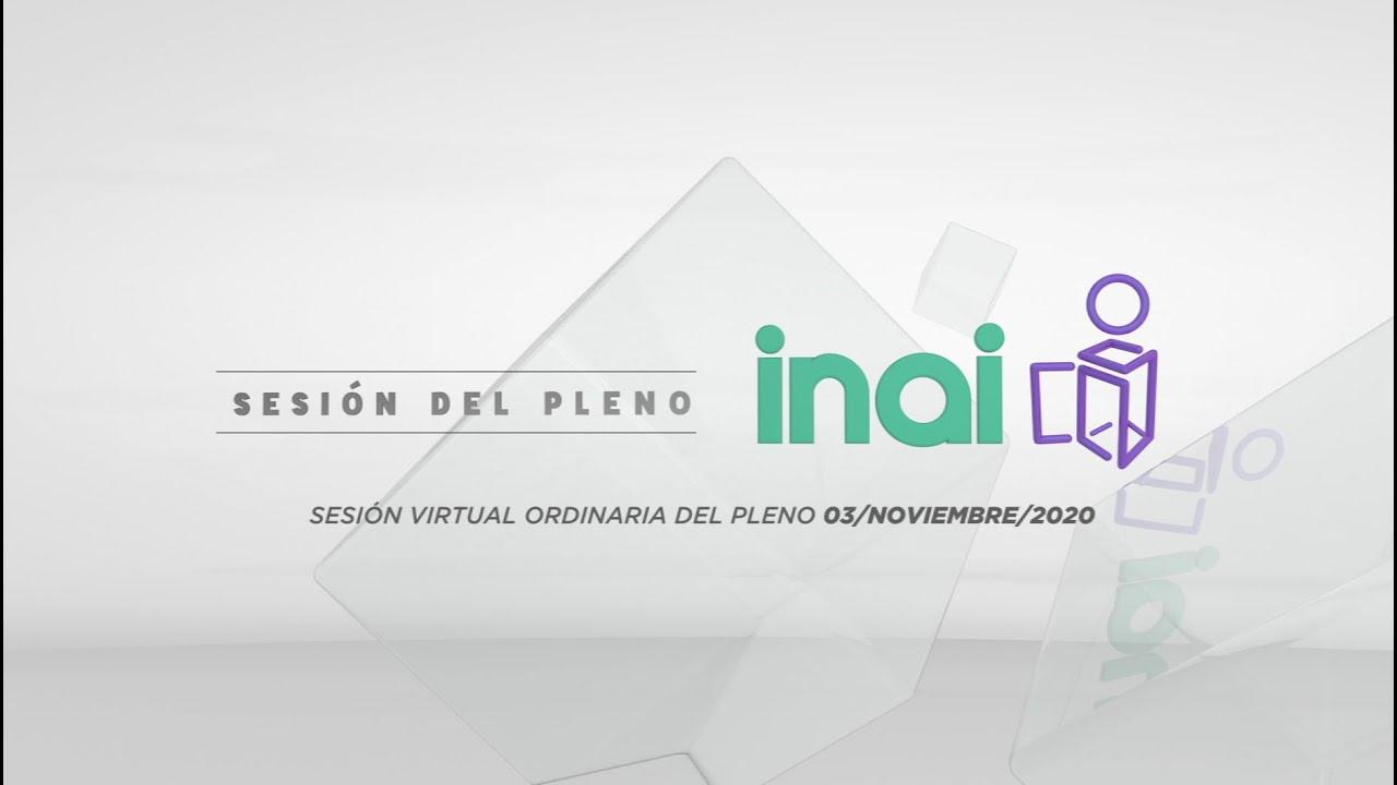 Sesión pública virtual del 3 de noviembre de 2020