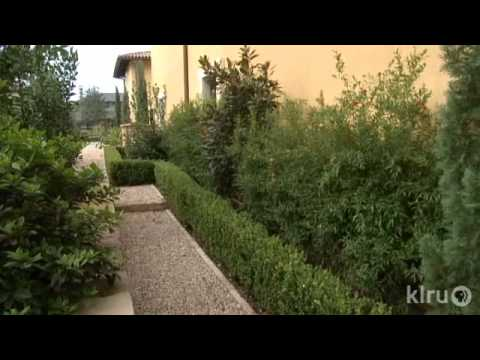 Garden design ideas low maintenance - Tait Moring Italian Garden Design Central Texas Gardener Youtube