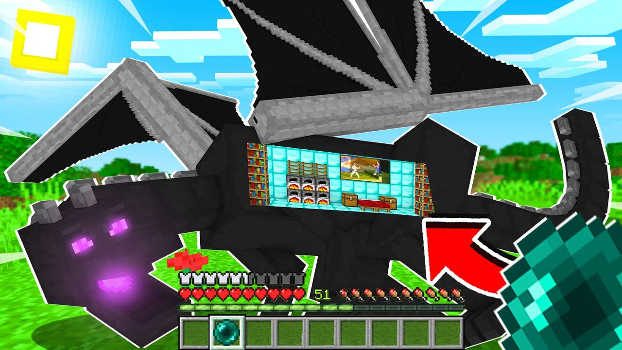 Minecraft But You Can Go Inside Ender Dragon