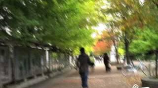 第7回(2008年度)科学技術社会論学会:2日の朝
