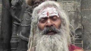 Leben mit Shiva