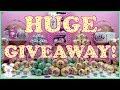 HUGE LOL SURPRISE GIVEAWAY CONTEST!!! PART 1 - Big Sister Ball Opening |SugarBunnyHops