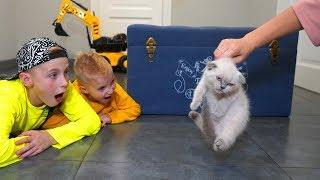 Мама ПРОТИВ ... Хочет выбросить на улицу!!!Mom VS kitten. What now?