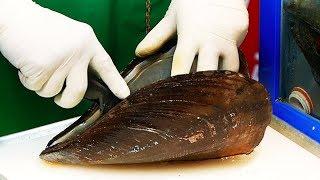 韓國路邊小吃 - 巨型貽貝,龍蝦,海鮮,零食  韓國夜市