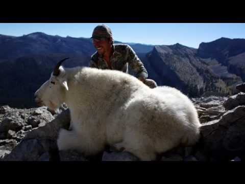 Mountain Goat Hunt, Bob Marshall Wilderness
