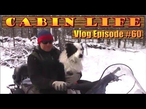off-grid-cabin-life-ski-doo-repair,-mice-and-no-birds.-a-backwoods-living-vlog-#60