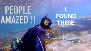 Found GOLD Treasure NO POLICE Assistance  Underwater Metal Detecting 6 RINGS!! (Owners Happy)