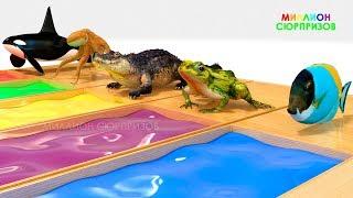 Учим цвета с 3д Морскими животными   3д Грузовик для детей   Учим названия морских животных