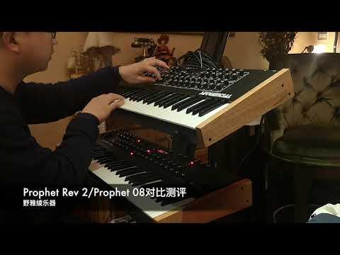 Sequential Prophet Rev 2/Prophet 08对比测评/键盘中国论坛
