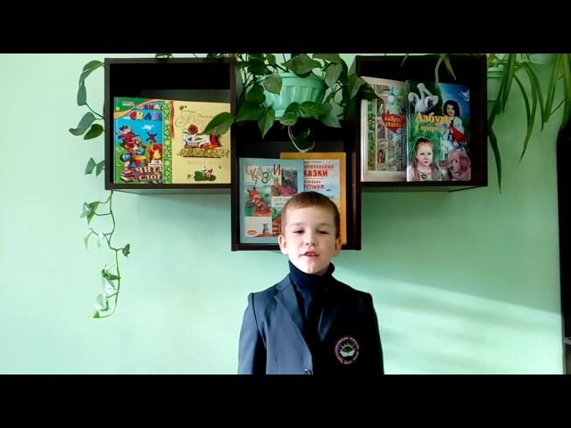 Изображение предпросмотра прочтения – КириллДевкин читает произведение «Ласточки пропали...» А.А.Фета