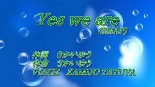「Yes we are/SMAP」(Nスタ テーマソング)歌ってみた[KAMIJO]