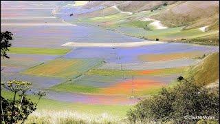 CASTELLUCCIO - LA FIORITURA 2015 - INCANTEVOLE SPETTACOLO - The Flowering #Umbria - Full HD