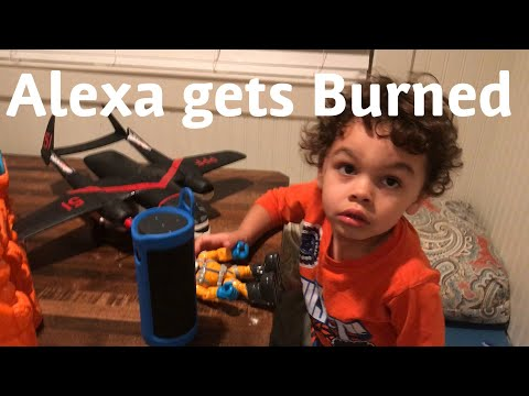 Alexa Fail -  gets burned when asked to play Paw Patrol theme