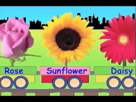 Learn Flower Train Learning For Kids Youtube
