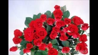Salvatore Adamo  Quand Les Roses.wmv