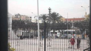 BLIDA: le 15 Mars 2013. Le retour des cigognes à Bab Essebt