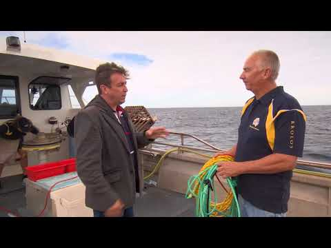 Rock Lobster Fishing At Abrolhos Islands