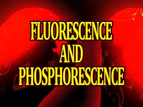 What Are Fluorescence And Phosphorescence How It Works Youtube