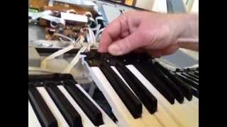 Video How to Fix a Yamaha Keyboard With a Dead Note download MP3, 3GP, MP4, WEBM, AVI, FLV Oktober 2018