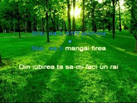 Fuego - Stai, mai stai (karaoke)