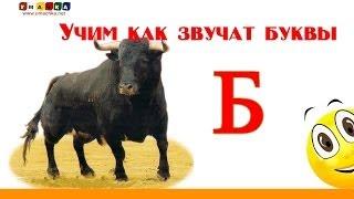 Алфавит русский Учим Буквы и Звуки с Кругляшиком - Буква Б