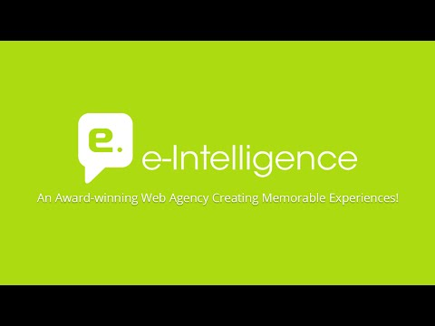 e-Intelligence Web Agency Profile