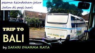 Hikmah Telat Berangkat, Pesona Pantura Jalur Tapal Kuda di Pagi Hari | Trip to Bali by OBL
