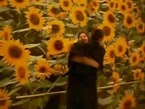 Tournessols - Vonda Shepard; Searching my soul