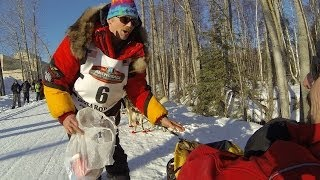 Mitch Seavey sled-cam 2014 Iditarod Trail Sled Dog Race ceremonial start