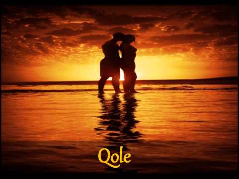 Qole by Dmp