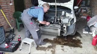 Сбил лису - разбил машину. Во что обошёлся ремонт Поло. Разговорчики в пути