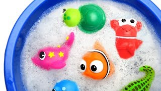 Learn Sea Animal and Wild Zoo Jungle Animals Names Education Video Animal Toys For Kids