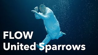 FLOW 『United Sparrows』