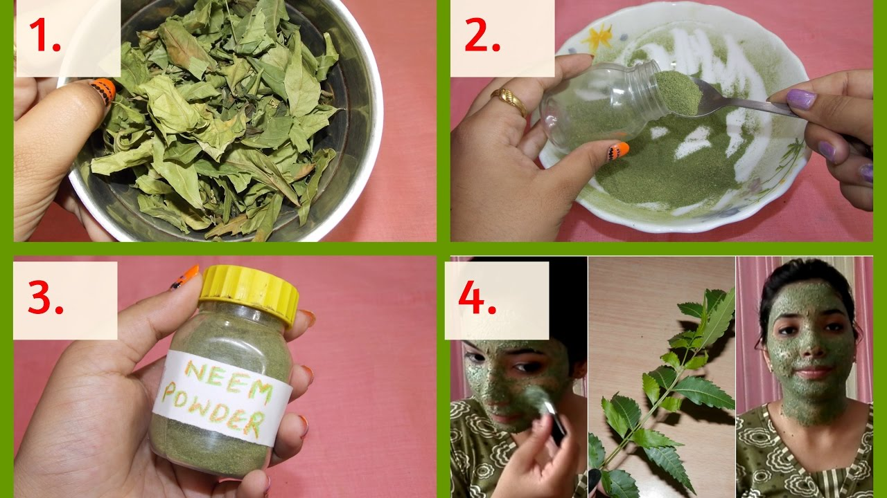 how to make neem powder at home |neem face pack | benefits & uses!