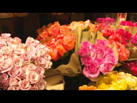 From flower farm to store, behind-the-scenes of blooming businesses